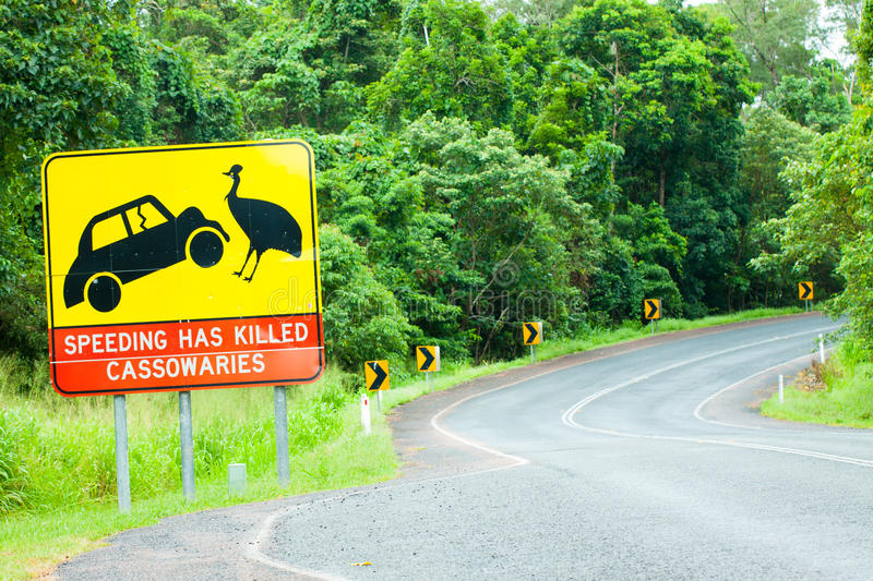 Cassowary road warning sign in Australia stock photos