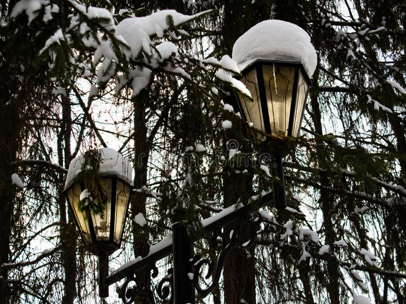 A cast-iron street lantern with a light on inside with snow caps at top under the branches of spruce in winter. A cast-iron street lantern with a light on inside stock photos