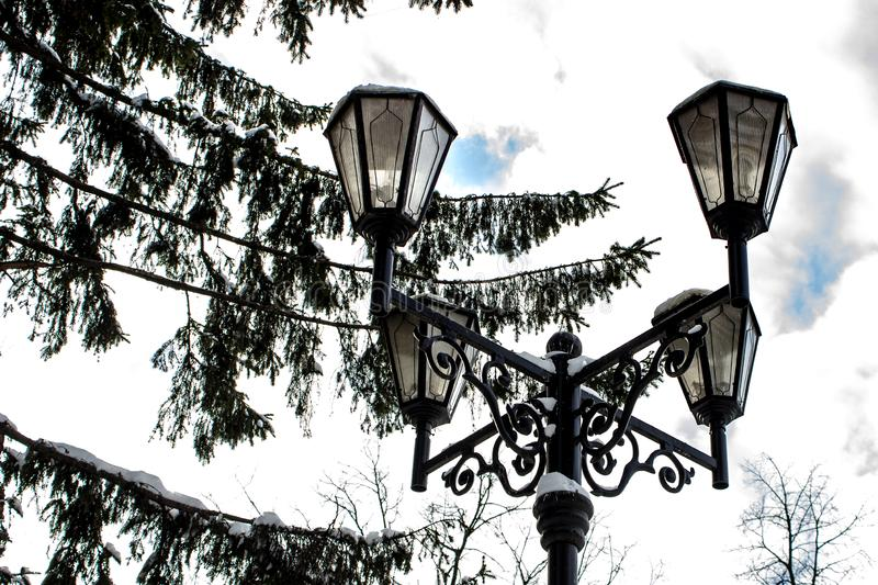 A cast-iron street lantern with snow caps at top under the branches of spruce in winter. A cast-iron street lantern with snow caps at the top under the branches royalty free stock image