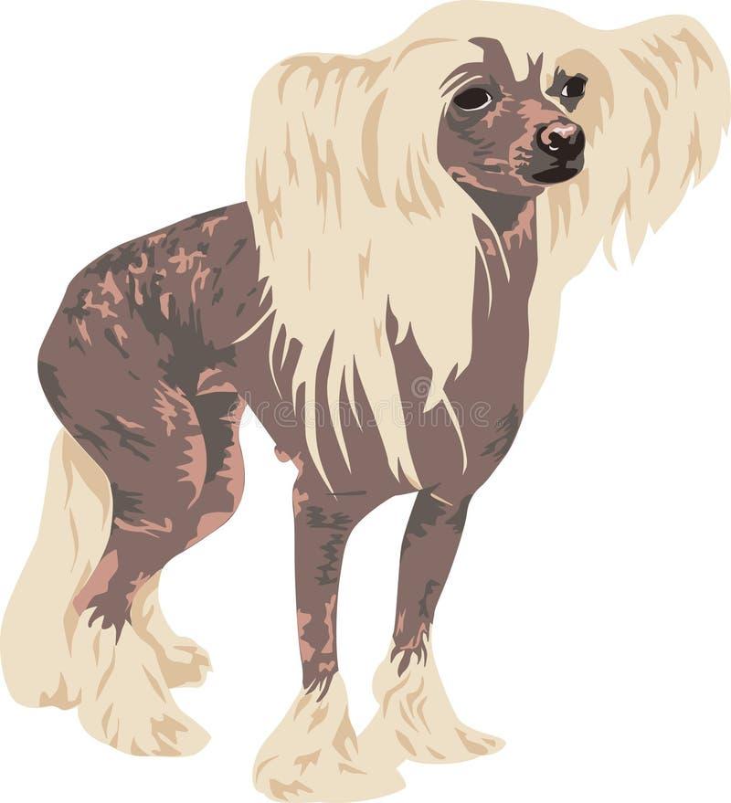 Casta con cresta china del perro libre illustration