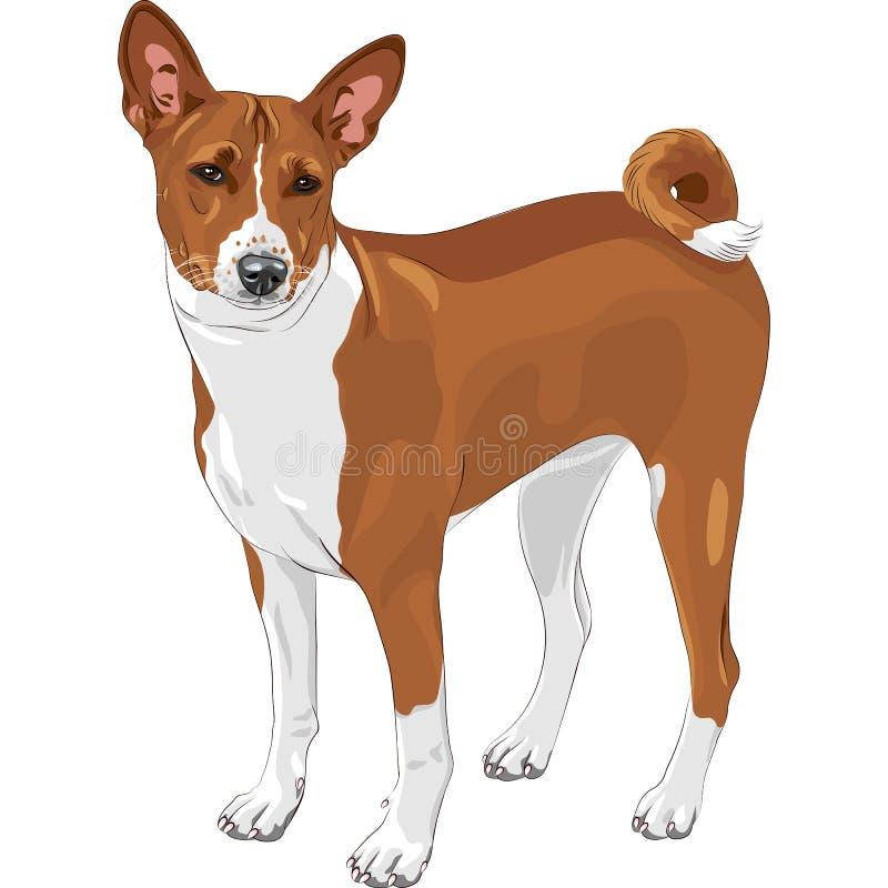 Casta de Basenji del perro de caza del bosquejo ilustración del vector