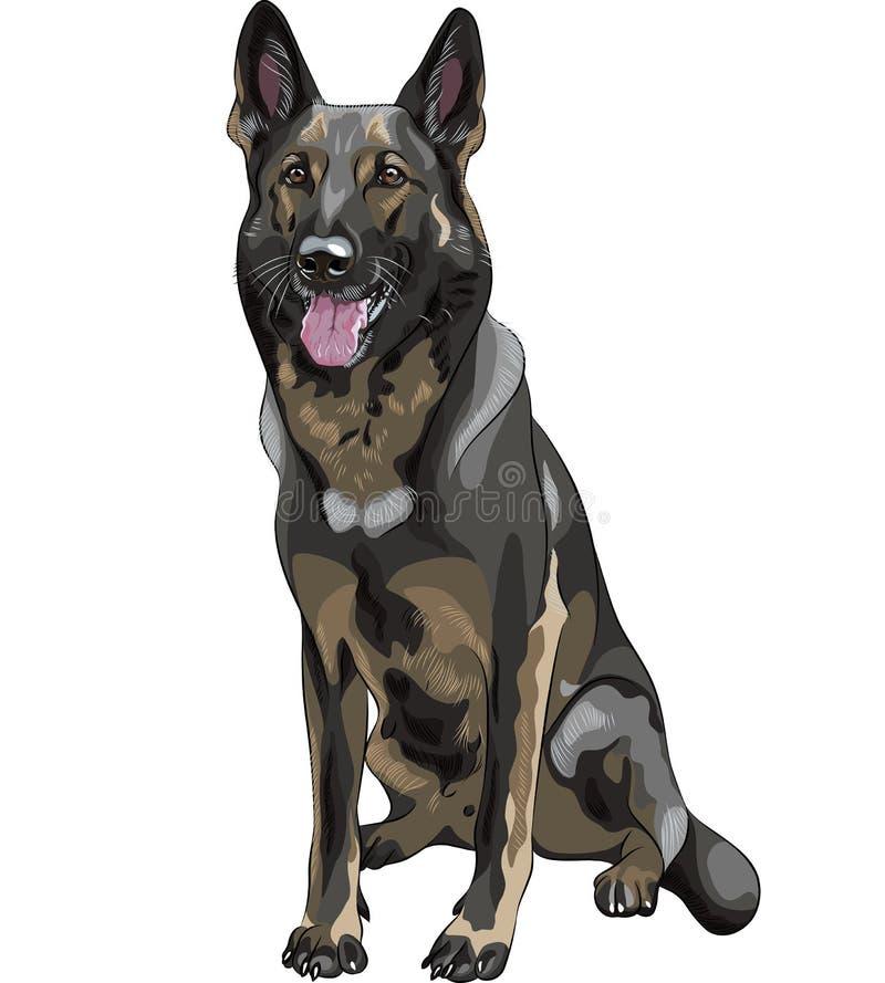 casta del pastor alemán del perro negro del vector stock de ilustración