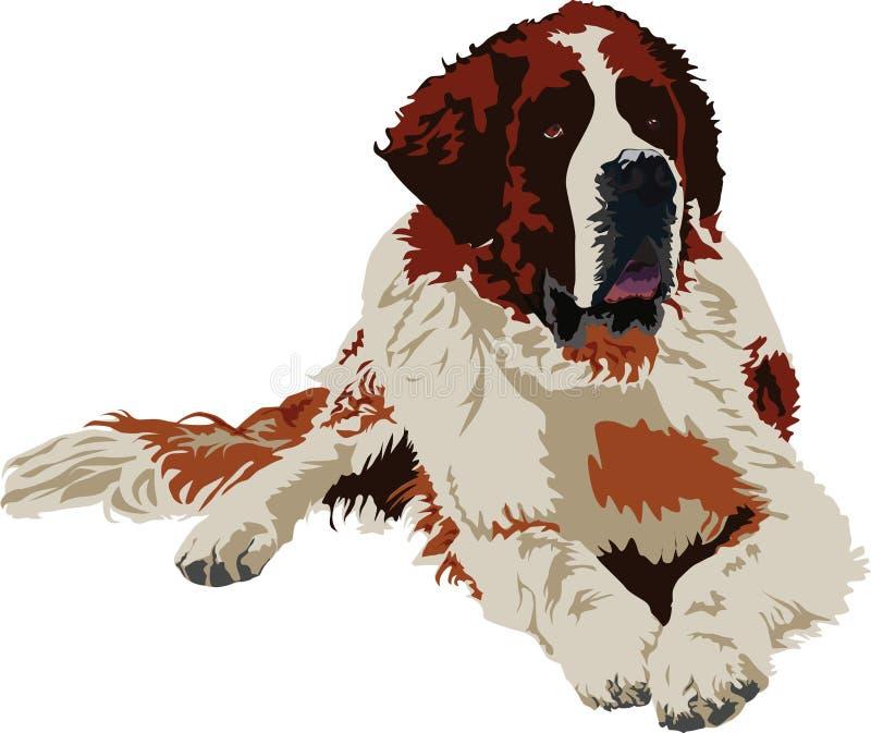 Casta del perro de Bernard del santo stock de ilustración