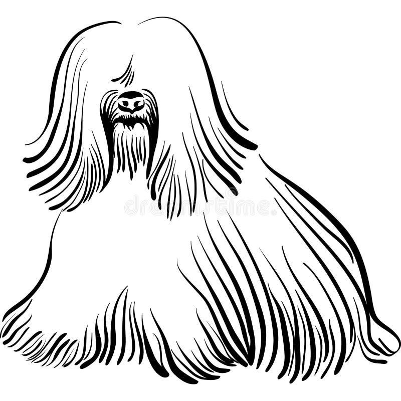 Casta del terrier tibetano del perro stock de ilustración