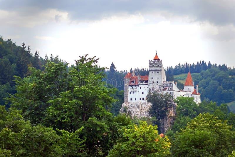 Casta della crusca - Dracula fotografia stock libera da diritti