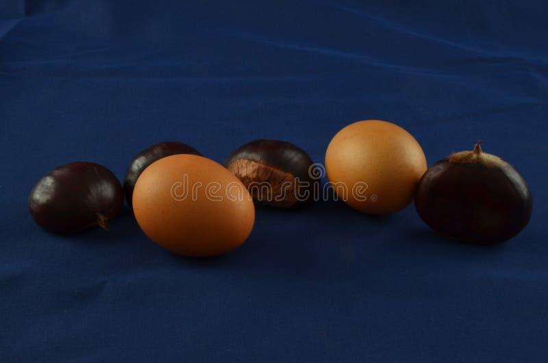 Download Castagne Fresche Con Fondo Blu Immagine Stock - Immagine: 101038553