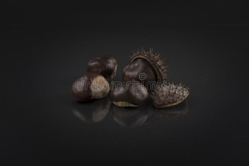 Castagne sul nero Foto artistica dell'ippocastano immagini stock libere da diritti