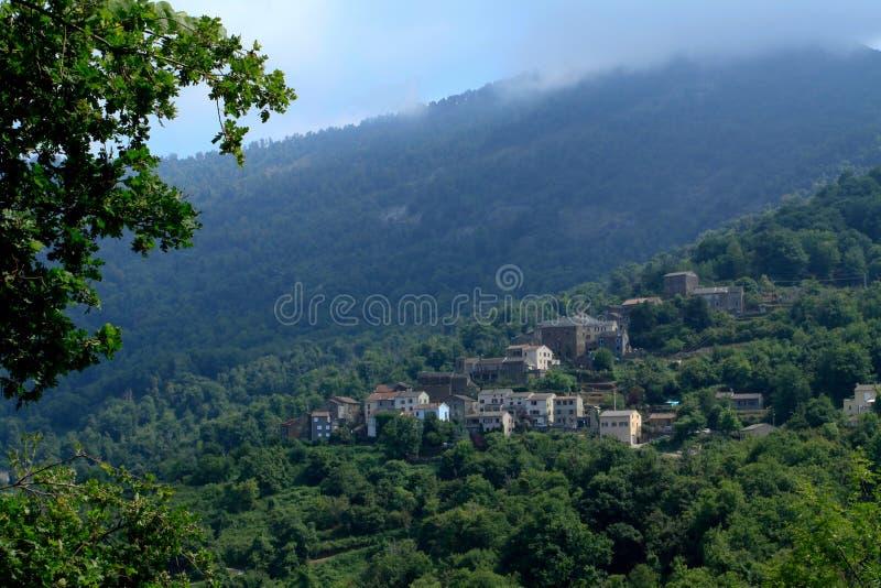 Castagniccia in Korsika stockfotos