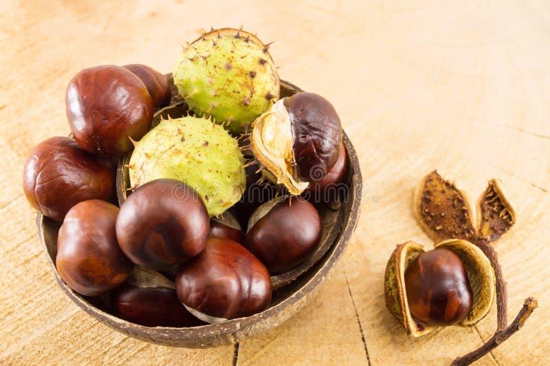 Castanhas selvagens com shell na bacia do coco imagem de stock