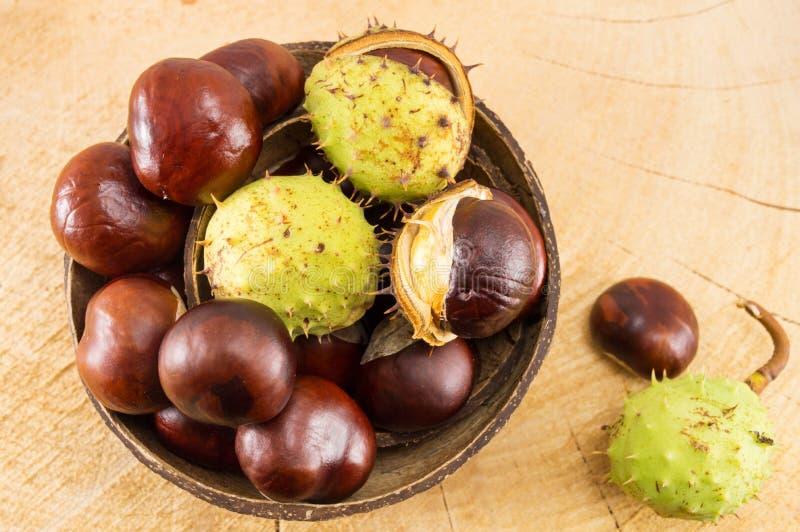 Castanhas selvagens com shell na bacia do coco foto de stock royalty free