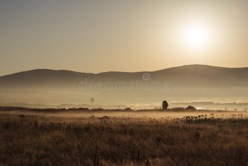 Castanho durante o Sunset foto de stock royalty free