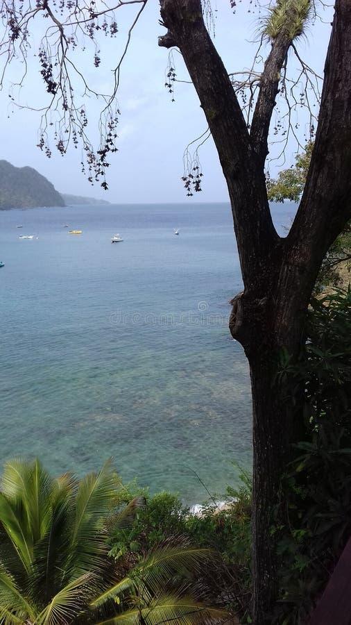 Castara-Bucht Tobago lizenzfreie stockfotos