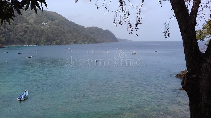 Castarabaai Tobago stock foto