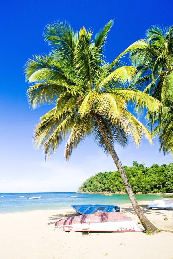 Castarabaai, Tobago royalty-vrije stock foto