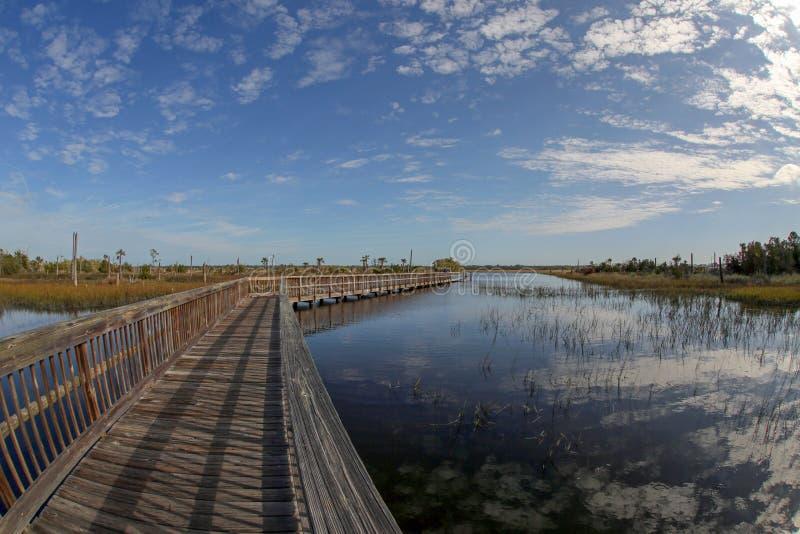 Castaway Island Preserve Boardwalk. The boardwalk over the wetlands at Castaway Island Preserve in Jacksonville, Florida stock images