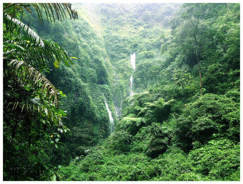 Castaway Waterfall stock photos