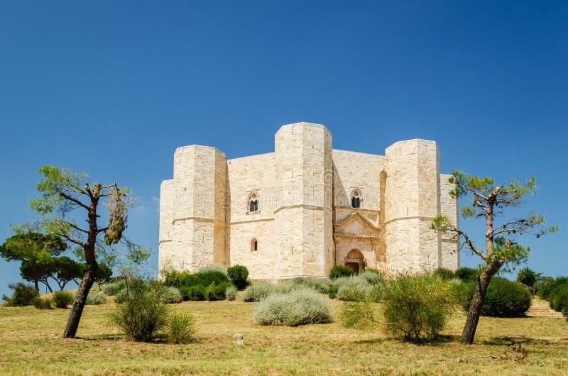 Castel del Monte,普利亚 库存照片