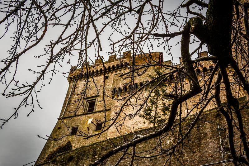 The castel on hill of soriano nel cimino and the autumn leafs royalty free stock photography
