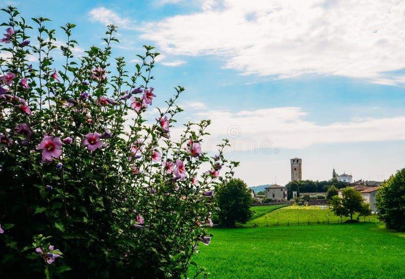 Castellaro Lagusello, Mantova, Itália fotografia de stock royalty free