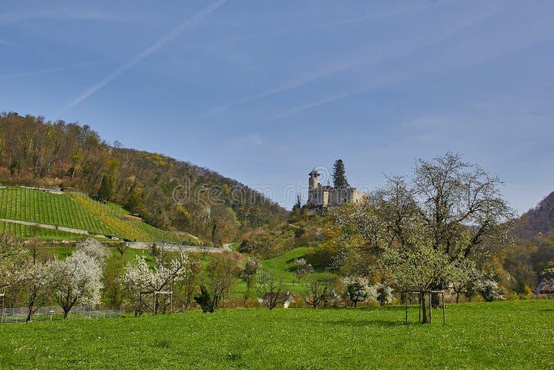 Castello Birseck in Arlesheim (Svizzera) fotografia stock