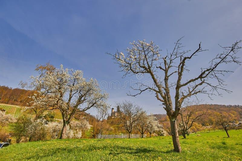 Castello Birseck in Arlesheim (Svizzera) fotografia stock libera da diritti