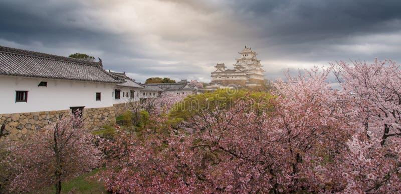 Castello del Giappone Himeji, castello bianco dell'airone nel bello che di sakura immagini stock libere da diritti