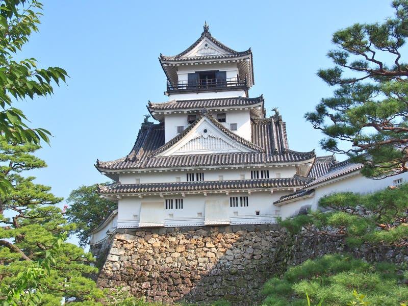 Castello del Kochi nel Kochi, prefettura di Kochi, Giappone fotografia stock libera da diritti