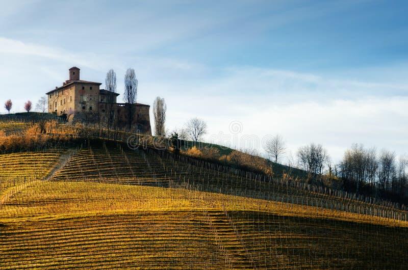 Castello della伏打和葡萄园Barolo,意大利 图库摄影