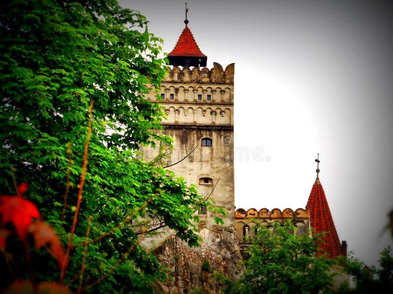 Castello della crusca su bagnato e su Windy Day, Romania fotografia stock libera da diritti