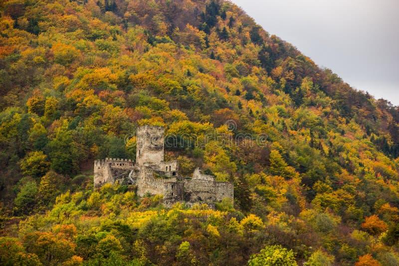 Castello dello Spitz con la vigna di autunno in valle di Wachau, Austria fotografia stock