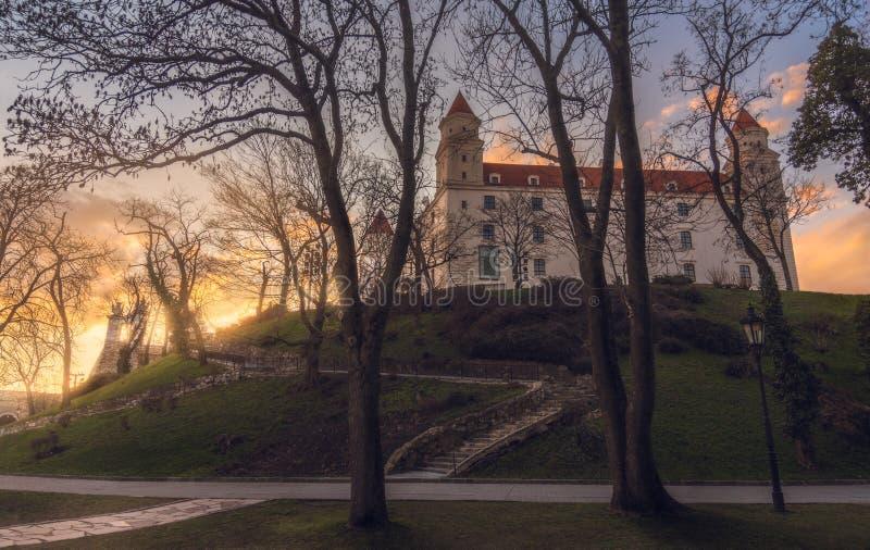Castello di Bratislava attraverso gli alberi fotografia stock libera da diritti