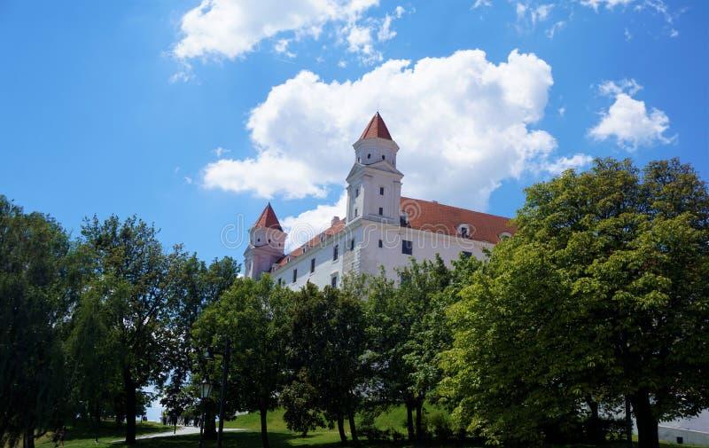 Castello di Bratislava dietro gli alberi fotografia stock libera da diritti