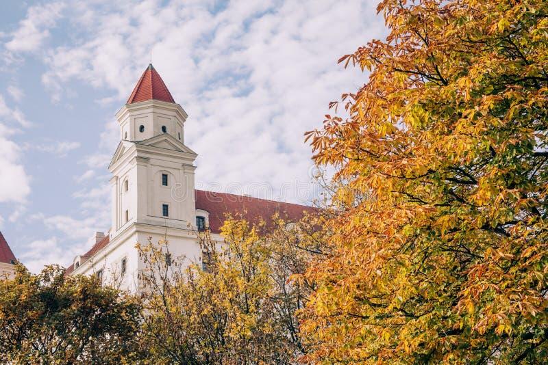Castello di Bratislava incorniciato dagli alberi in autunno fotografia stock