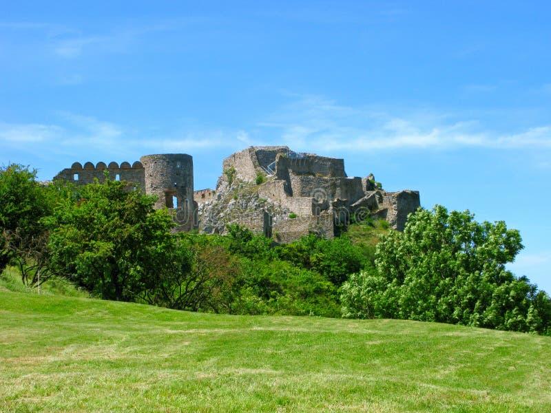 Castello di Devin, della Slovacchia, prato ed alberi immagini stock libere da diritti