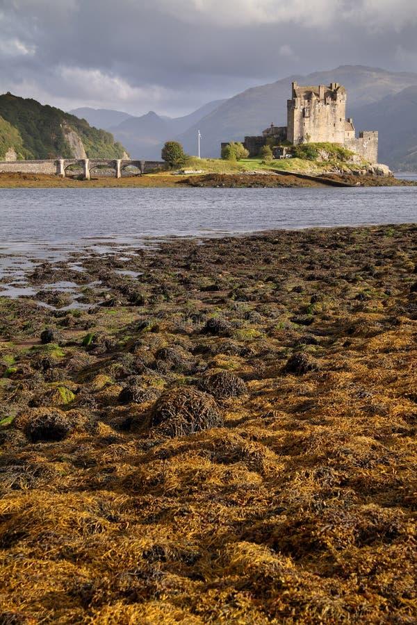 Castello di Eilean Donan, Kintail, Scozia immagine stock libera da diritti