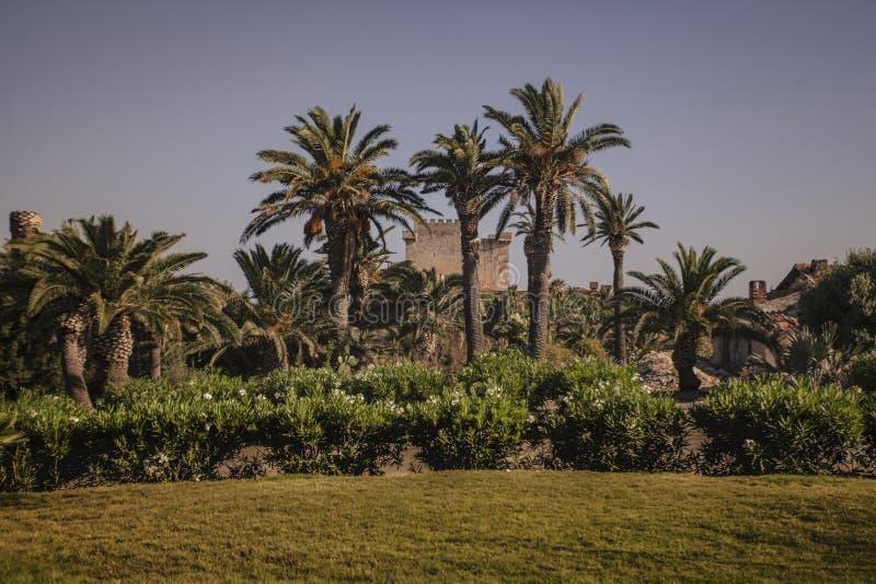 Castello di Falconara in Sicilia 2 immagine stock libera da diritti
