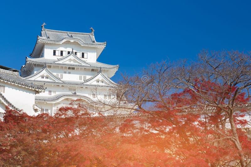 Castello di Himeji con chiaro cielo blu con le foglie rosse immagine stock