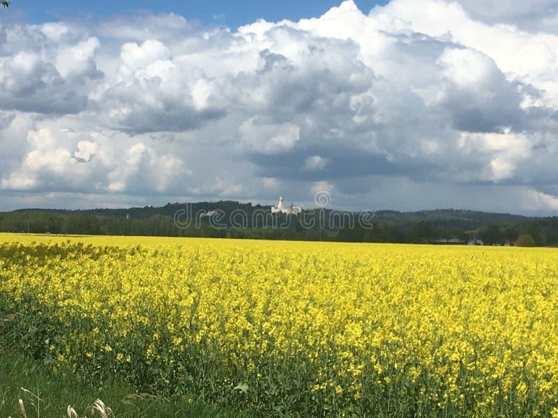 Castello di Hluboka immagine stock