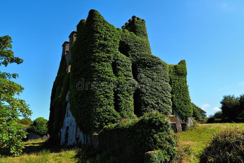 Castello di Menlo, Irlanda fotografia stock libera da diritti