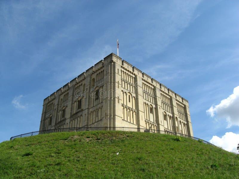 Download Castello di Norwich immagine stock. Immagine di normanno - 30829391