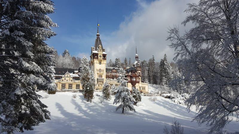 Castello di Peles - inverno fotografie stock libere da diritti