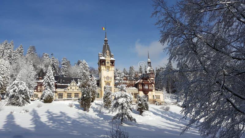 Castello di Peles - inverno immagine stock