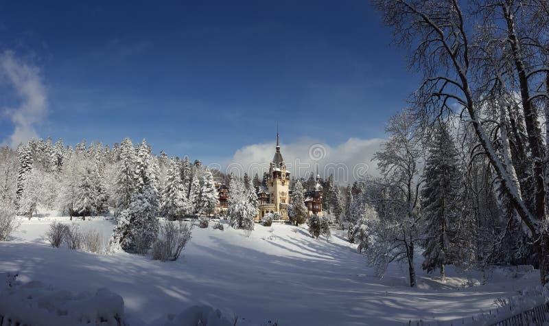Castello di Peles - inverno - segni fotografie stock
