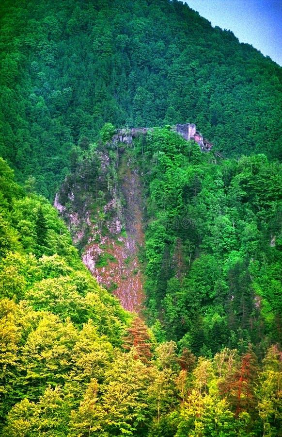 Castello di Poienari, Romania immagine stock