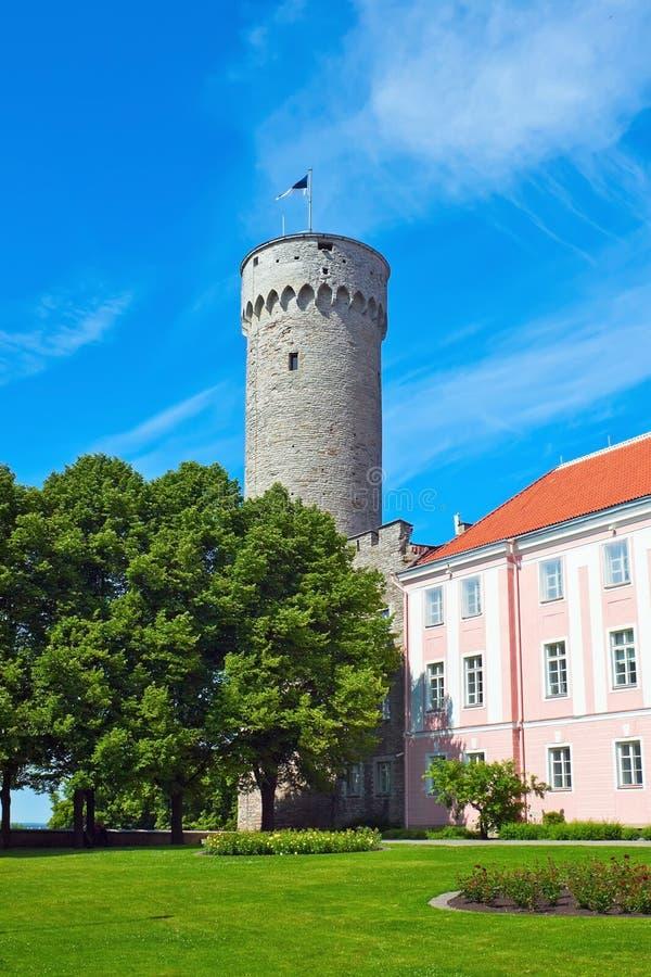 Castello di Toompea immagine stock