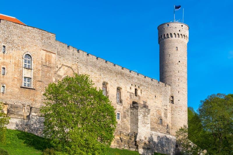 Castello di Toompea Tallinn, Estonia immagini stock