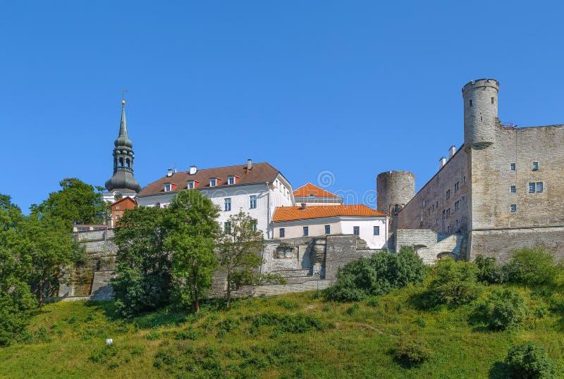 Castello di Toompea, Tallinn, Estonia fotografia stock libera da diritti