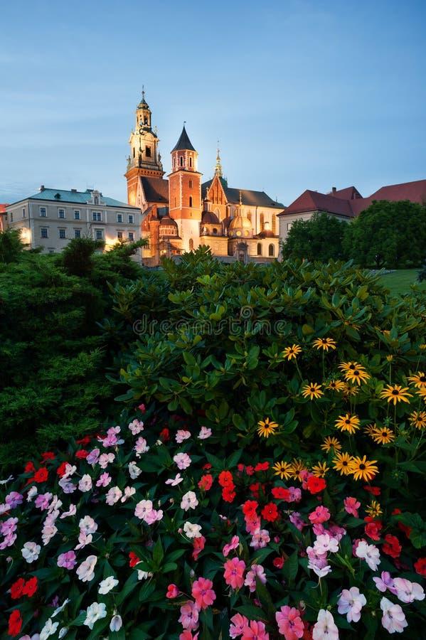 Castello di Wawel alla notte immagini stock