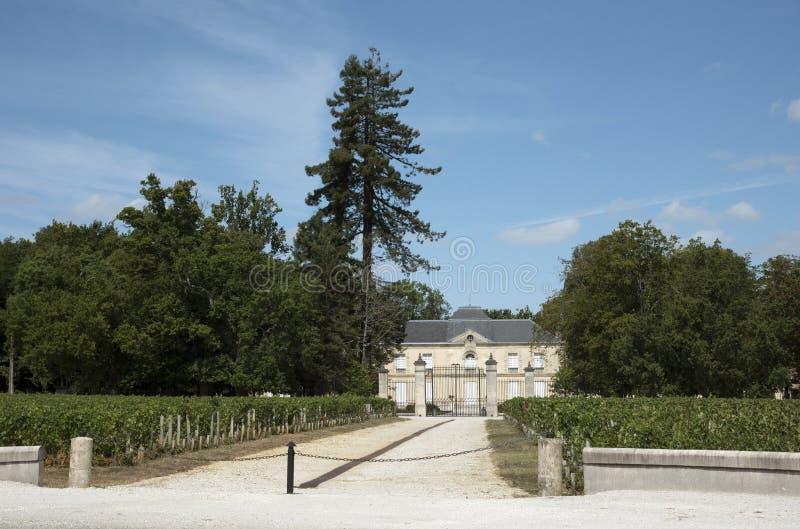 Castello e viti francesi immagini stock