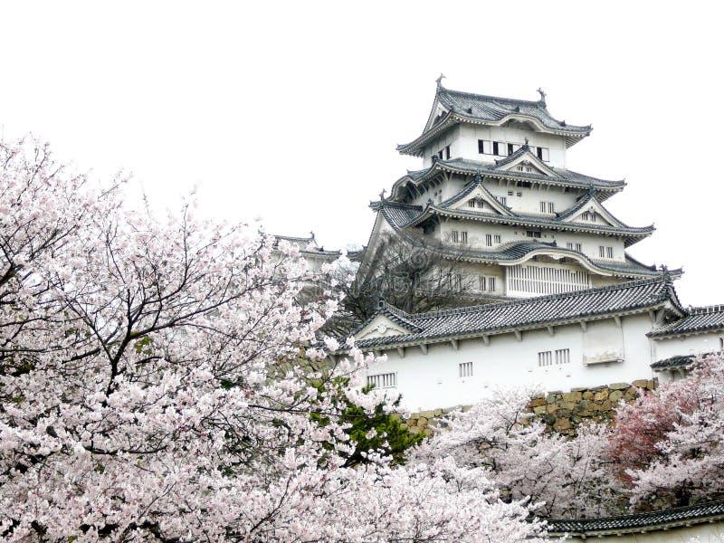 Castello giapponese durante il fiore di ciliegia fotografia stock libera da diritti